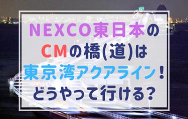 NEXCO東日本のCMの橋(道)はどこ?夜に光り輝く東京湾アクアライン!