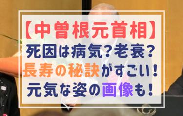 中曽根元首相の死因は病気?老衰?【画像】長寿で元気な姿がすごい!